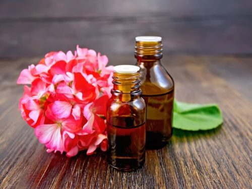 Geranium Oil for Skin