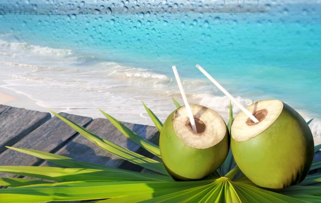 Drinking Coconut Water for Skin
